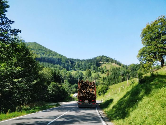 Lorry on a winding road Road Truck Trucking Lorry Lorryload Cloudscape GERMANY🇩🇪DEUTSCHERLAND@ Clouds And Sky Green Tree Pinaceae Sky Woods Countryside The Way Forward Pathway Narrow Long Empty Road