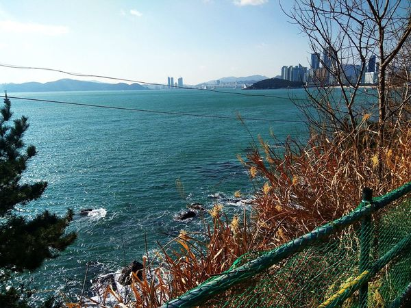 Ocean view of Busan, South Korea taken with my Remmi Note 3 Pro Busan Busan,Korea Haeundae Nature Photography Oceanview RedmiNote3Camera RedmiNote3Pro RedmiNotePhotography Xiaomi Xiaomiphotograph Xiaomiphotography