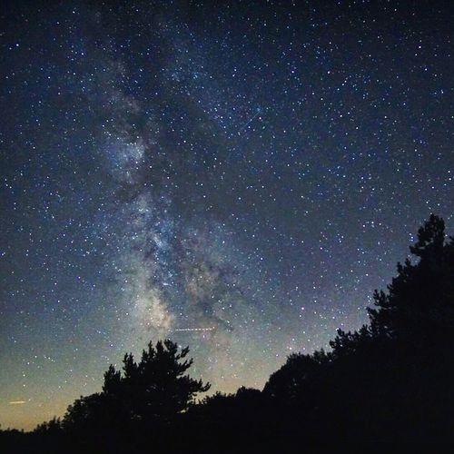 Stars Milkyway