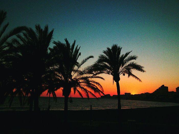 Taking Photos Malaga Beach Hello World SummerBeautiful Sunset Enjoying Life Awesome Nikon D3200