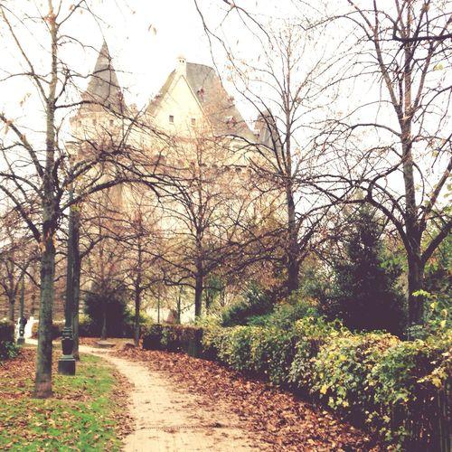Hallegate Brussels