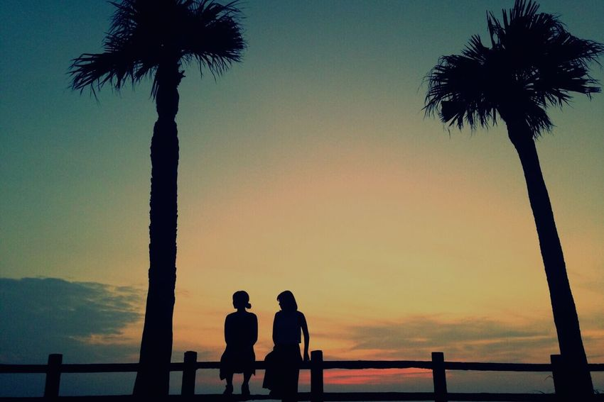 Silhouette Sunset Palm Tree Scenics Beauty In Nature Nature Sea Lifestyles Tree Beach Leisure Activity Water Real People Tranquil Scene Tranquility Togetherness Tree Trunk Men Weekend Activities Sky Japan Amami Island 奄美大島