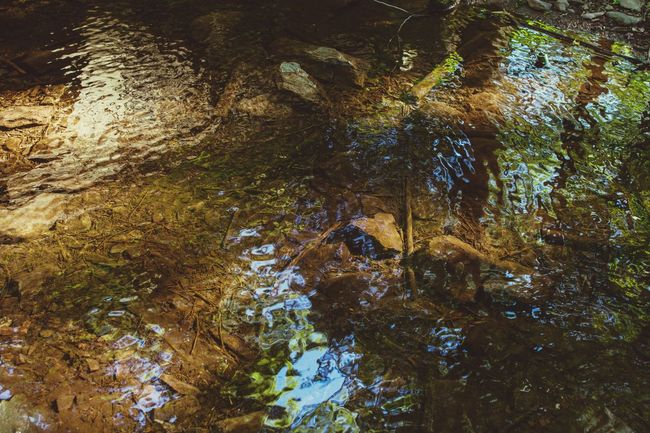 Water Backgrounds Full Frame Low Angle View Abstract No People Nature Growth Outdoors Day Beauty In Nature Tree Abstract Nature Wave River Stream Serine Peacful Zen Meditation Thought