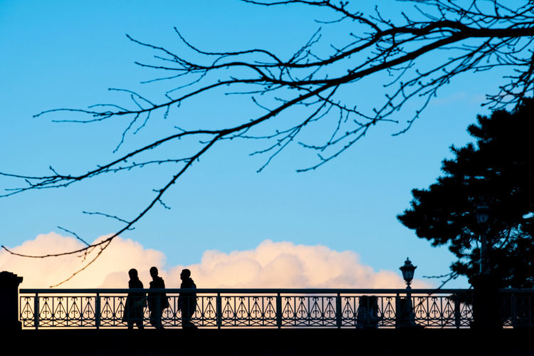 silhouette people and dried tree branch on bridge against blue sky and drama colour of clouds at Kanazawa Castle, Japan Silhouette People Bridge Clouds Blue Sky Drama Scenic Colour Shadow Dark Kanazawa Castle Japan Sun Sunset person Travel Evening Summer Light Sunrise Purple Tree Branch Landscape Architecture Nature City Persons Promenade Beautiful Morning Woman Walk Sunny View Night Orange Crowd Red Landmark Man Romantic Happiness Lifestyle Men Romance Tourism Day