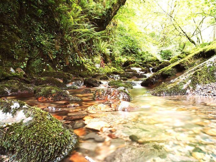 Foces del río Pendón Asturias Paraiso Natural🌿🌼🌊🌞 Rutas De Asturias First Eyeem Photo