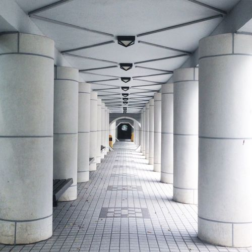 Architectural Column Architecture Diminishing Perspective Geometry HongKong Hongkongpark No People Park Photography Symmetry The Way Forward Tunnelvision Vanishing Point