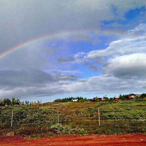 Scenic view of field against rainbow in sky
