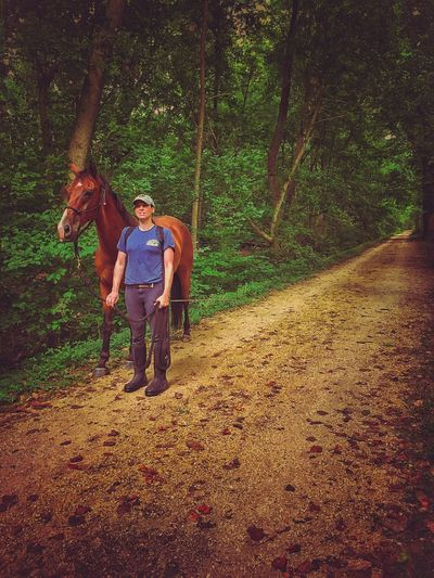 Share the trail Horse Bike Path Along The Way In The Woods Woods Path Share The Road Cycling Around Bicycle Trip Summer Views