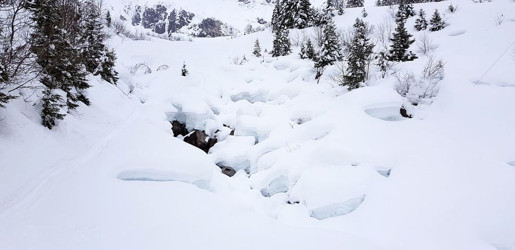 Snow Cold Temperature Winter Close-up Animal Themes Animal Track Deep Snow Ski Track Powder Snow Ski Lift Polar Climate