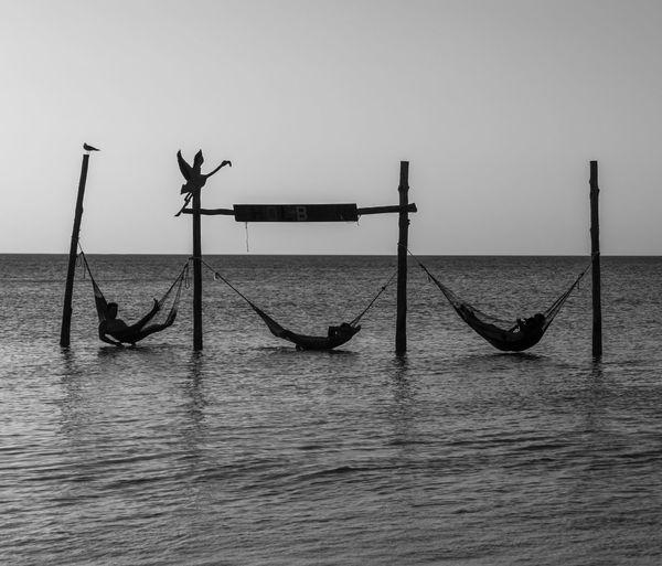 Three hammocks