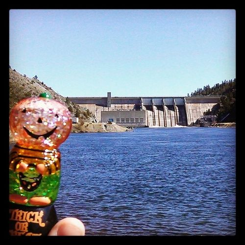 It is absolutely beautiful in Helena Montana today! Pumpkin enjoyed cruising around Cannon Ferry, eating at York Bar and soaking up the sun down by the dam. Summerissoclose beautifulday