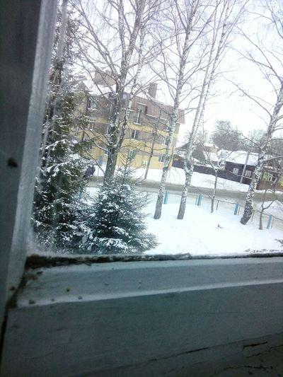 Winter Day Sky School Life
