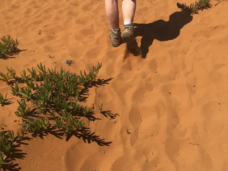Hiking Portugal Trilhodospescadores Sand Human Body Part Low Section Nature One Person Human Leg Leisure Activity Outdoors