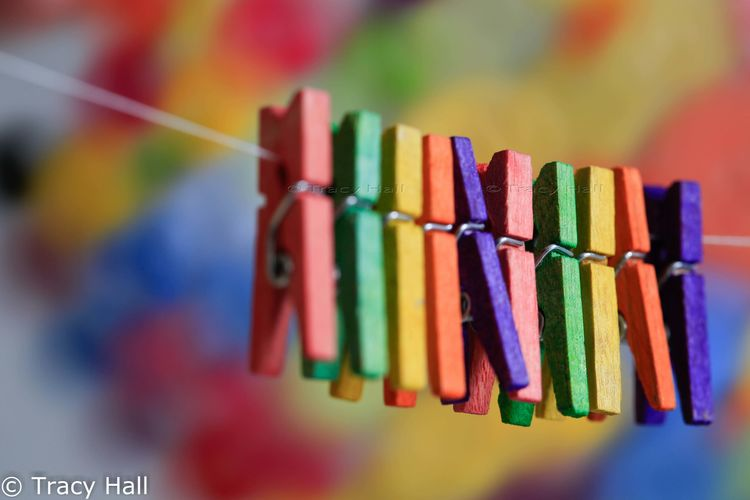 Close-up Clothesline Clothespin Clothespins Colorful Focus On Foreground Group Of Objects Hanging Implements In A Row Multi Colored Selective Focus Vibrant Color Wooden Wooden Tools