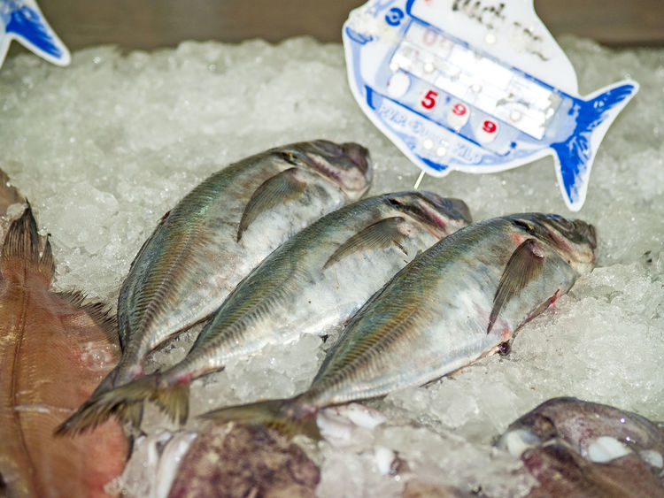 Animal Close-up Day Fish Fish Food Fish Market Fish Shop Fishing FishMarket Food Food And Drink Food Market Foodphotography Foodshop Healthy Eating Healthy Food Healthy Lifestyle Market Marketplace No People Prices Seafood Shop Shopping