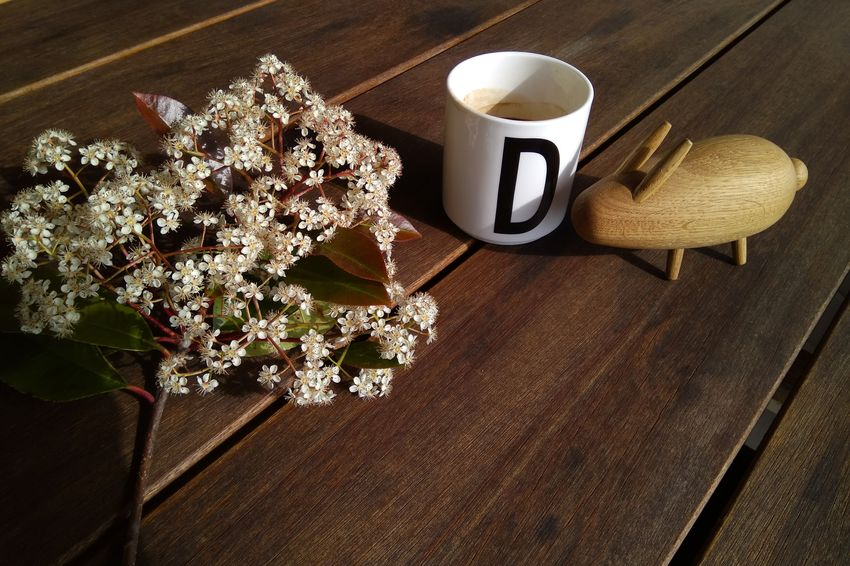 EyeEm Selects No People Day Indoors  Close-up Still Life StillLifePhotography StillLife Still Life Photograpy Wood - Material Flower Flower Head Toy Decoration Text Here Coffee Coffee Time Coffee Break Bunny  Bunny Toy White Flower Autumn Autumn Colors Wooden Toy Coffee - Drink EyeEmNewHere