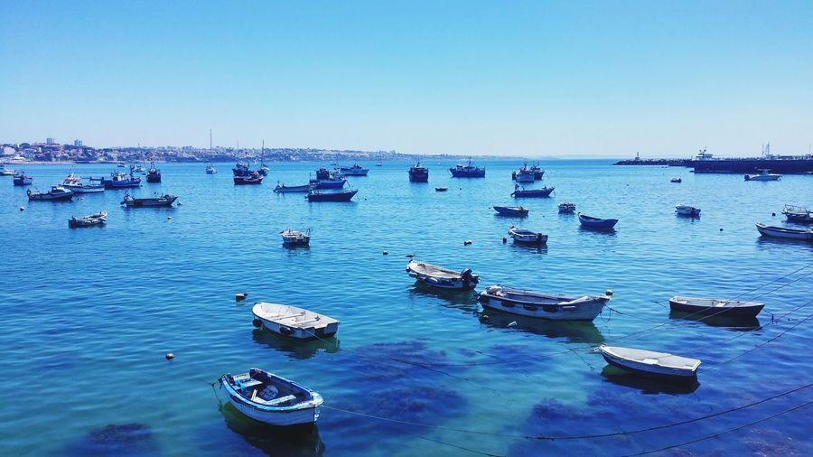 Boats in sea at harbor