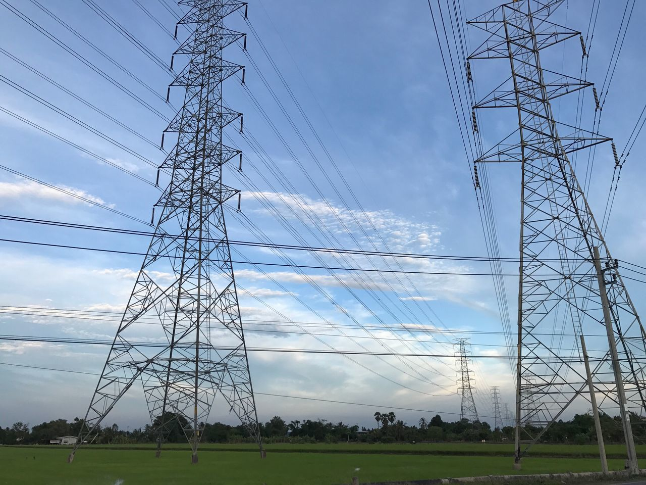 electricity, power supply, fuel and power generation, technology, electricity pylon, cable, sky, power line, connection, low angle view, nature, field, plant, land, no people, cloud - sky, grass, tall - high, environment, outdoors, complexity, electrical component, electrical equipment