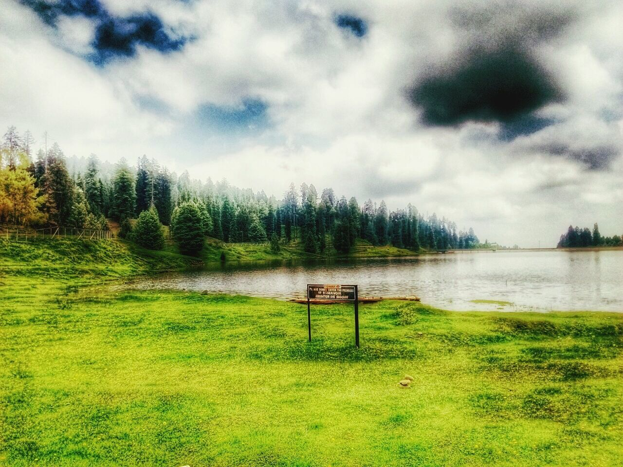 grass, nature, tree, scenics, cloud - sky, beauty in nature, tranquility, sky, green color, tranquil scene, no people, day, outdoors, water, landscape, mountain