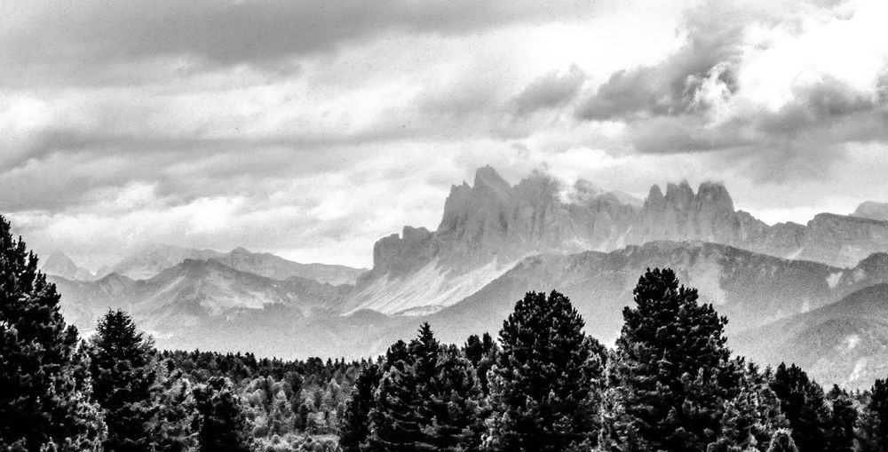 Dolomites in Black and White EyeEm Best Shots EyeEm Nature Lover EyeEmBestPics EyeEm Best Shots - Nature EyeEm Best Shots - Black + White Blackandwhite Tree Mountain Nature Beauty In Nature Sky Scenics Tranquility No People Cloud - Sky Tranquil Scene Landscape Outdoors Silhouette Forest Mountain Range Day
