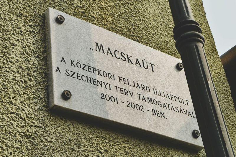 Macskaút Esztergom Esztergomi Bazilika Hungary