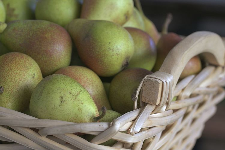Close-up of fruits in basket