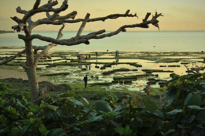 The Great Outdoors - 2016 EyeEm Awards Okinawa Cape Zanpa China Sea Sunset Reflection
