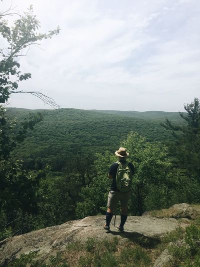 Rear view of hiker looking at green landscape against sky