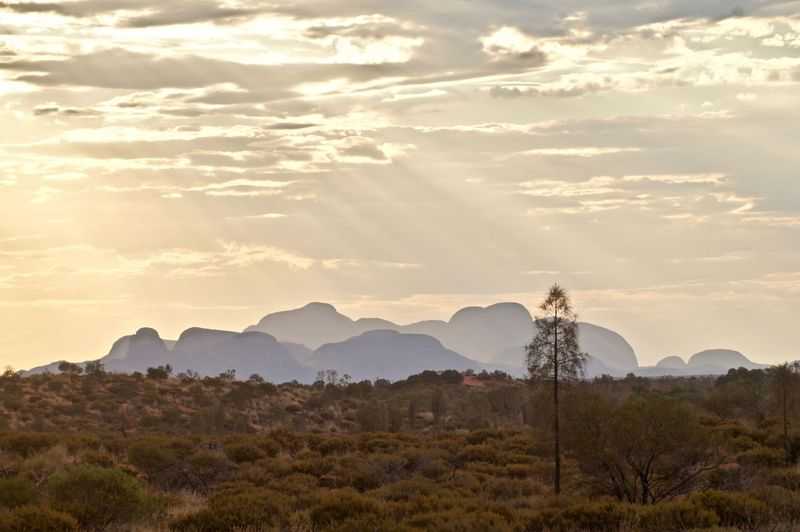 Australian outback as the last rays of the sunset fall on the desert and a distant rocky outcrop.