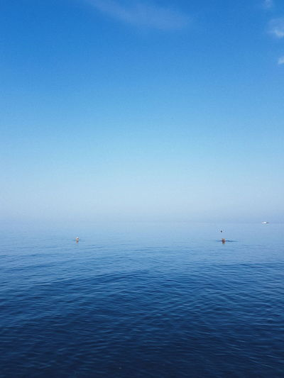 Minimalism Sea Blue Bird Water Flying Sea Blue Sky Sailing Ship Yachting Humpback Whale Buoy Sailing Rippled Calm Whale Helm Dalmatia Region - Croatia Yacht Adriatic Sea Tall Ship Cruise Sailor Rudder Boat Deck Regatta Mast Sailboat Boat #urbanana: The Urban Playground EyeEmNewHere