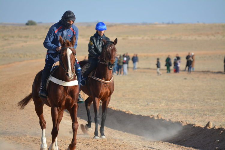 People riding horses on land