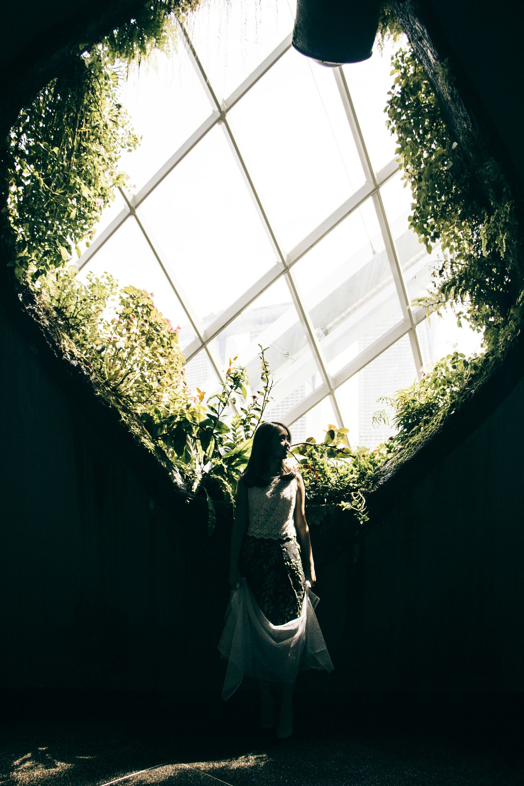 tree, indoors, low angle view, sunlight, plant, growth, day, art, window, men, statue, sculpture, human representation, lifestyles, sky, shoe, art and craft, leisure activity
