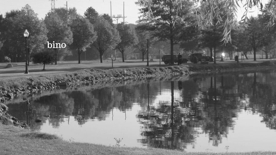 Archives Taking Photos Around The Lake Afternòon Shoot Reflection Perfection! Black And White Photography Lake Cadillac Pure Michigan