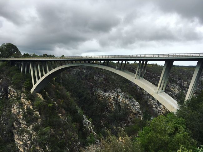 Roadtrip South Africa Gardenroute Bridge - Man Made Structure Connection Engineering Architecture Cloud - Sky Built Structure Viaduct Transportation Sky Bridge Day Arch River Railroad Bridge Outdoors No People Tree Footbridge Nature Water EyeEm Nature Lover Follows