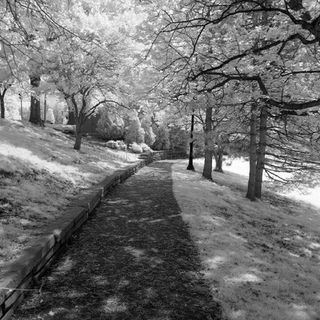 IMG_2412 by polishamericanphotographer on Flickr. Just follow this link to see and comment on this photo: https://flic.kr/p/t8sy8D Cleaveland CLE  Cleveland ClevelandOhio1796 Ohio UniversityCircle WadeLagoon CuyahogaCounty EastSide Water Beautifulohio Blackandwhite Blacknwhite Infrared CanonG11 InfraredCanonG11 Canon TeamCanon Digitalcamera Digitalphotography Digitalphoto PointNShot PointandShot Powershot ThisisCLE