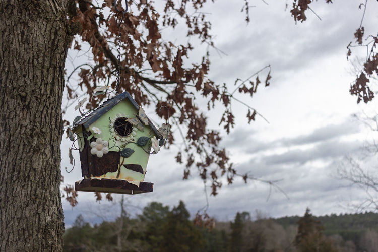 Blowing in The Wind Birdhouse Windy Day Windy Cloudy Day Nature Mountainscape Ozarks Of Arkansas Ozark Mountains Arkansas Outdoors Nature Photography Beautiful Nature Only In Arkansas Rural Scene Countryside Dover, Arkansas