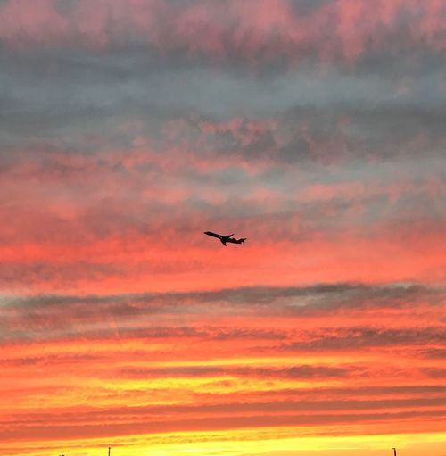 Someone leaving! Sunset Flying Sky Orange Color Airplane Cloud - Sky Silhouette Outdoors Red Transportation Mid-air Air Vehicle Nature Journey Beauty In Nature No People Low Angle View Scenics Plane Takeoff ✈ Charleston South Carolina