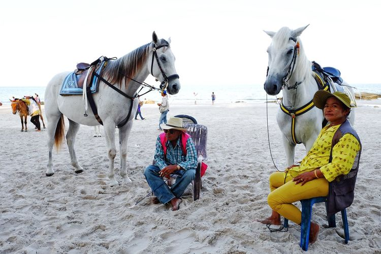 Adventureland Animal Themes Es Isch Siebni For You ;-) Friendship Getting Inspired Helo World Horse Live Is A Beach Livestock Outdoors Togetherness Wonderfulworld Done That. Connected By Travel You Raise Me Up✨ Landscapes With WhiteWall Things I Like Spotted In Thailand EyeEm Bestsellers Up Close Street Photography People Of The Oceans Feel The Journey On The Way Paint The Town Yellow Been There.