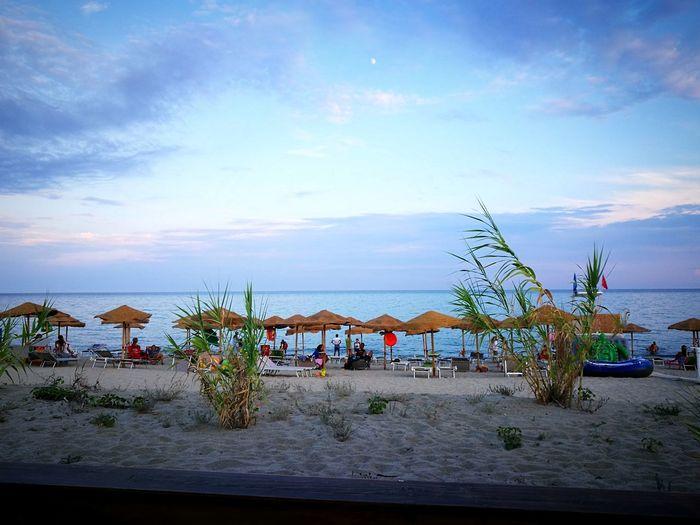Water Sea Beach Nautical Vessel Tree Sand Blue Sunset Summer Sky