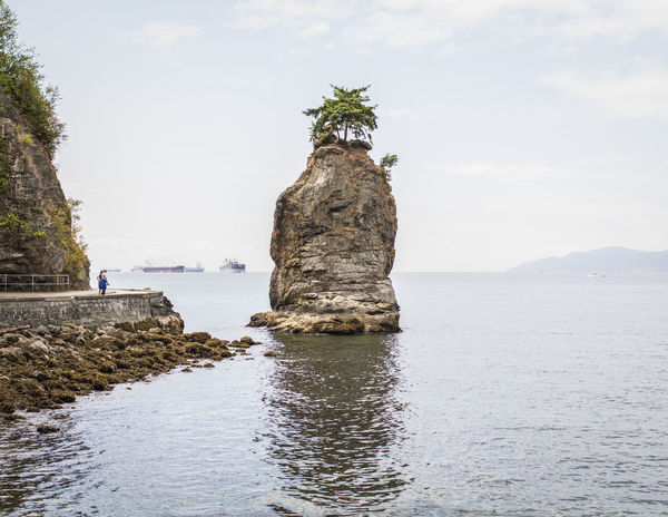 Beauty In Nature Canada Day Erosion Erosion Effects Nature Outdoors Pacific Northwest  Pacific Ocean Promenade Scenics Sea Sea And Rocks Sea And Sky Seascape Seaside Siwash Rock Sky Stanley Park Summer Tree Tree On Top Of The Rock Vancouver Vancouver BC Water