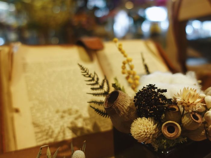 Close up short of flower and book on background in vintage style with copy space - Image Focus On Foreground No People Close-up Flower Plant Flowering Plant Indoors  Nature Beauty In Nature Fragility Animal Table Vulnerability  Decoration Freshness Animal Themes Flower Head Day Selective Focus Close Up Cotton Plant Fern Old Book Vintage Yellow Color Fairy Beauty In Nature Blurred Background Copy Space Tales