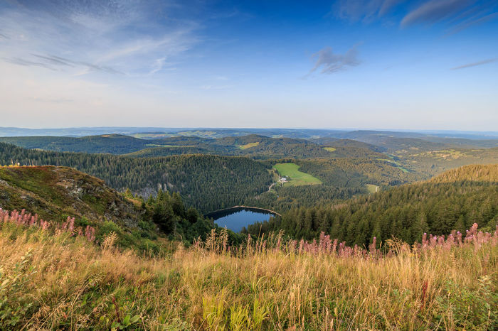 Der Feldsee von oben Feldberg Schwarzwald Beauty In Nature Black Forest Cloud - Sky Day Feldsee Grass Landscape Mountain Nature No People Outdoors Scenics Sky Tranquility
