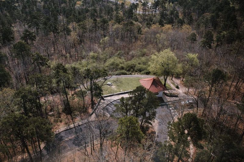 View from the tower. Tree Nature Water Tranquility No People Tranquil Scene Beauty In Nature Growth Built Structure Scenics Outdoors Architecture Landscape Day
