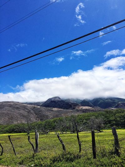 There are parts of Hawaii that look like... Scenics Field Landscape Tranquility Sky Nature Mountain Growth Beauty In Nature Outdoors Rural Scene Day Agriculture Cable No People Mountain Range Grass The Great Outdoors