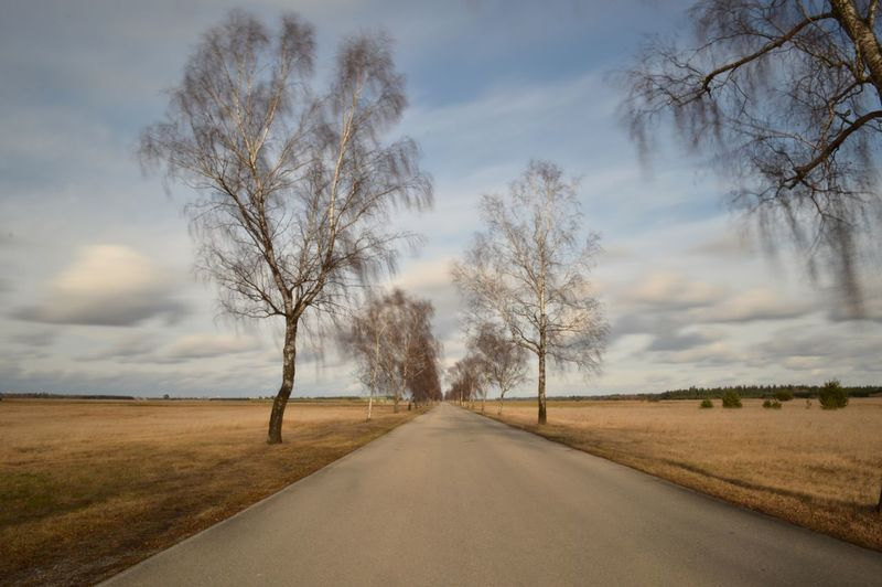 Long Exposure Street Cluods And Sky TreePorn Taking Photos Alley EyeEm Nature Lover Autumn Vanishing Point Edge Of The World taken near Scheuring, Bavaria Landscapes With WhiteWall