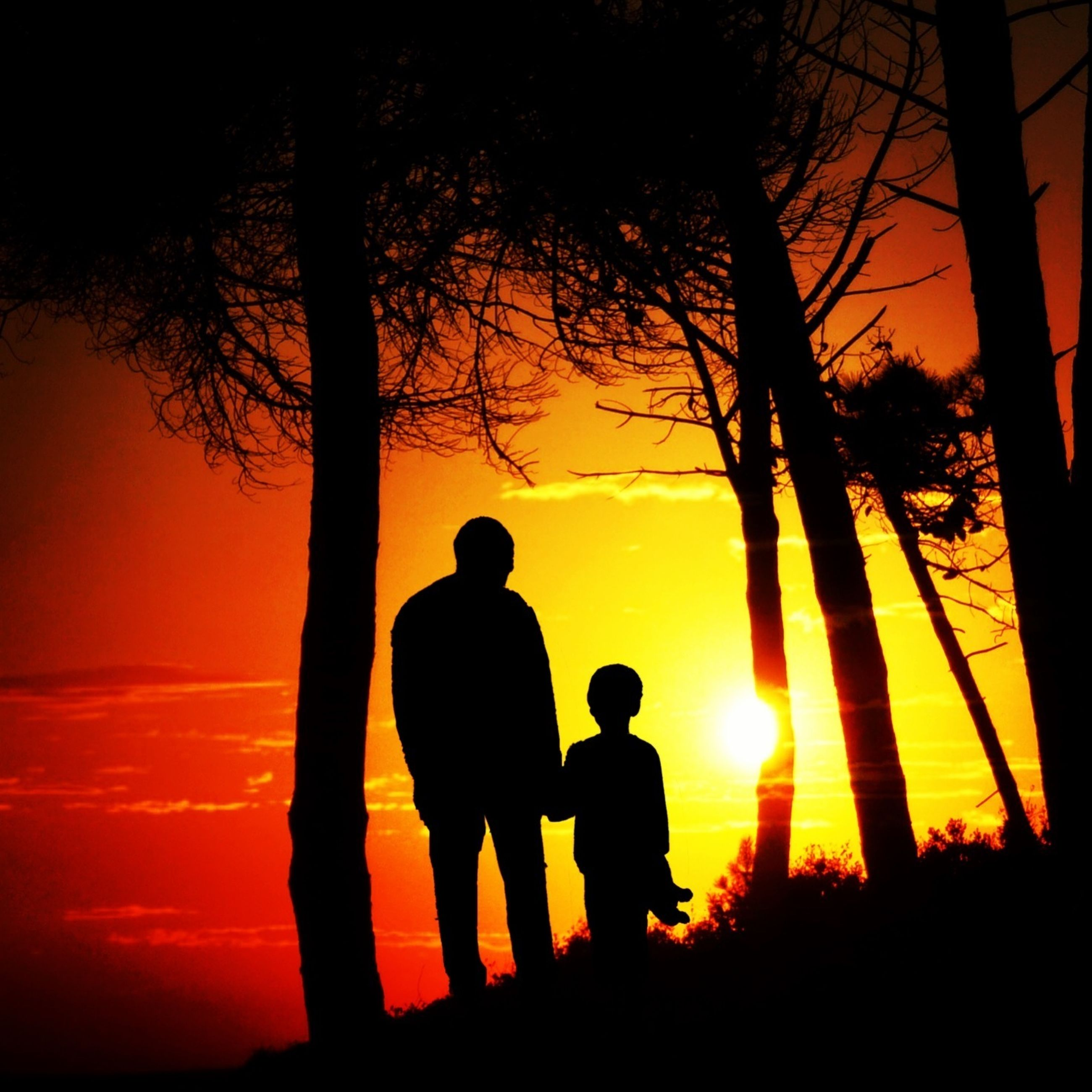 sunset, silhouette, sun, togetherness, orange color, bonding, lifestyles, leisure activity, tree, love, men, beauty in nature, standing, nature, tranquility, tranquil scene, friendship, childhood