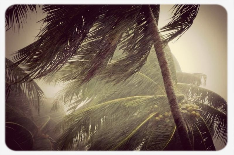 A moment of #Monsoon