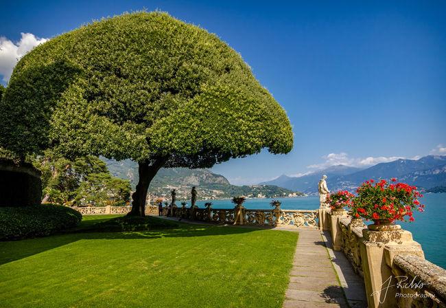 Villa Del Balbianello Mediterranean  Blue Day Lago Di Como Lake Nature No People Outdoors Shooting Location Sky Lago Di Como, Italy Umbrella Tree