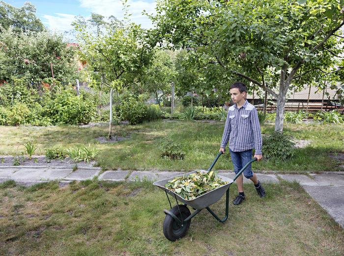 Full length of boy with wheelbarrow at park
