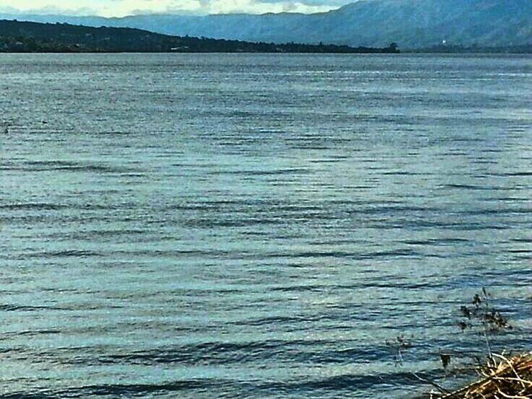 Lake View Sunny Nature Argentina